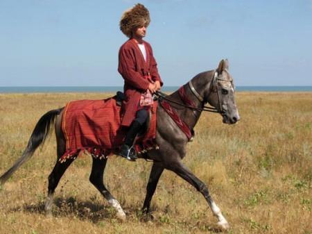 Ахалтекинская лошадь с наездником