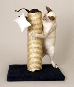 Своими руками игрушки для кошек