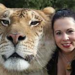 Породы самых больших кошек в мире