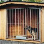 Как построить вольеры для собак своими руками: детальное руководство