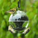 Как сделать кормушку для птиц своими руками: особенности и разновидности
