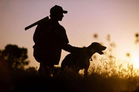 Человек и собака на охоте