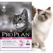 корм пурина для кошек разновидности корма