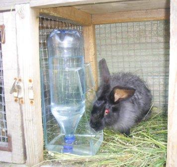 Поилки для кроликов под бутылку