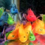 Самые неприхотливые аквариумные рыбки: кто они?