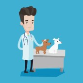 62579458-young-caucasian-veterinarian-with-stetoscope-examining-dogs-in-hospital-male-veterinarian-with-dogs-