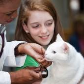 The-future-of-veterinary-vaccines-696x385