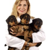 Vet_with_puppies_small