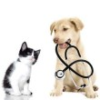 Veterinary-Animal-Vaccines-Market