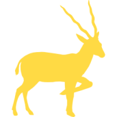 antelope-silhouette-from-side-view