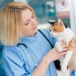 img_s02_veterinary