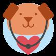 international-pet-travel-rabies-classification_large_87de02ad-a1ab-484d-920a-46f827f5c18a